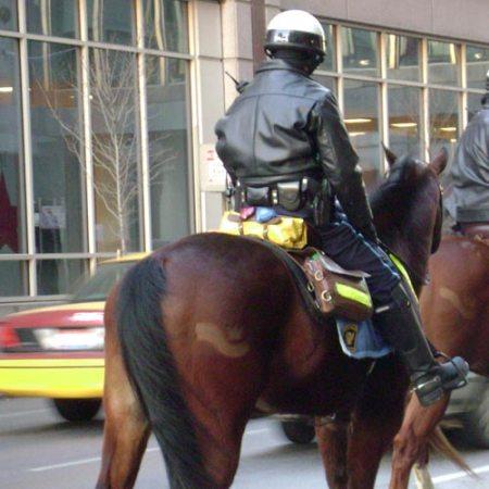 Cincinnati Police Department mounted unit