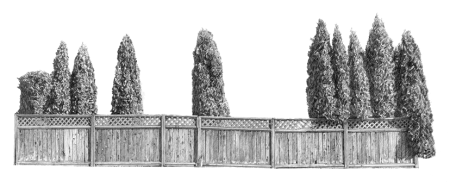 Hedges by Taizo Yamamoto