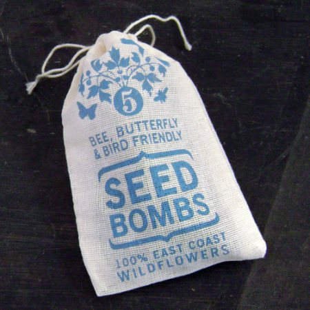 East Coast Seed Bombs by VisuaLingual