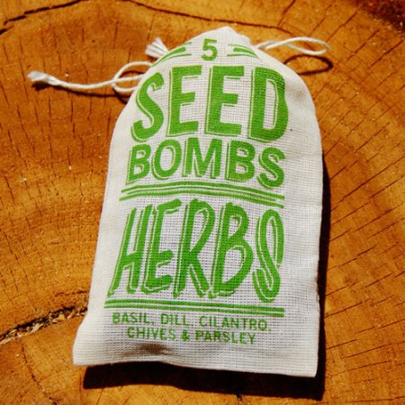 Herb Seed Bombs by VisuaLingual