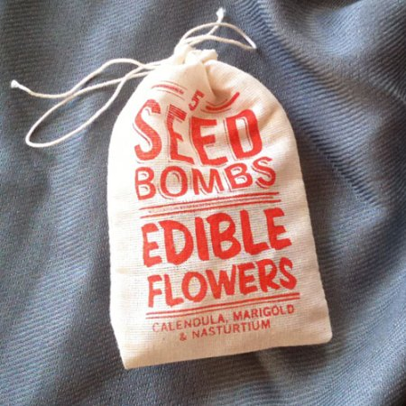Edible Flower Seed Bombs by VisuaLingual