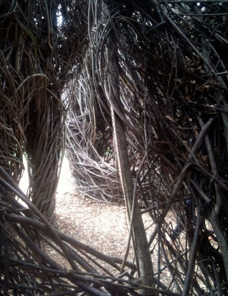 Natural History by Patrick Dougherty