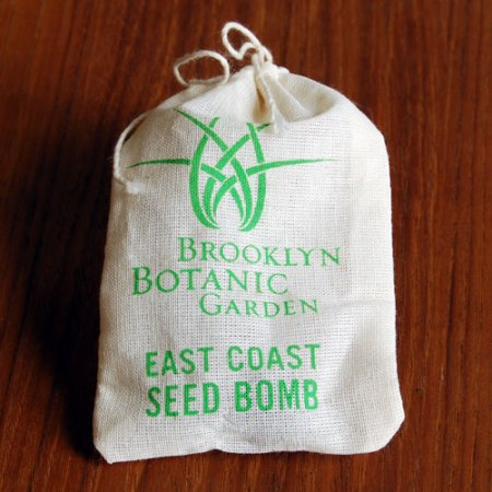 VisuaLingual Seed Bombs for the Brooklyn Botanic Garden