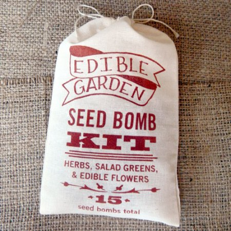 Edible Garden Seed Bomb Kit by VisuaLingual