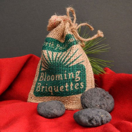 North Pole Coal Blooming Briquettes by VisuaLingual