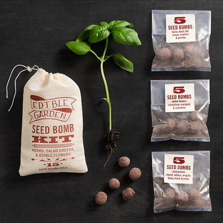 VisuaLingual Edible Garden Seed Bomb Kit at Restoration Hardware