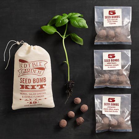 VisuaLingual Edible Garden Seed Bomb Kit at Restoration Hardware