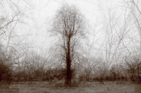 Landscape Photography by Ken Krugh