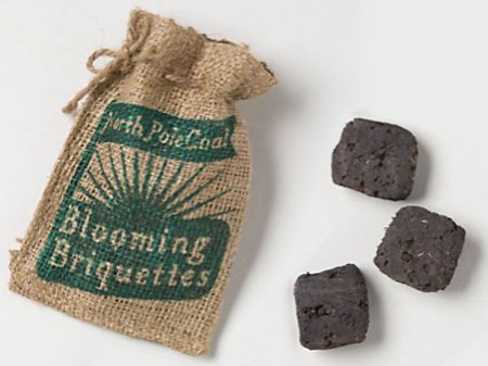 North Pole Coal Blooming Briquettes At Anthropologie