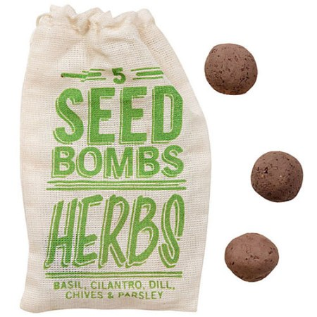 VisuaLingual Seed Bombs at Paper Source