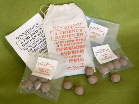A Friend's Garden Seed Bomb Kit by VisuaLingual