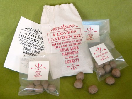 A Lovers' Garden Seed Bomb Kit by VisuaLingual