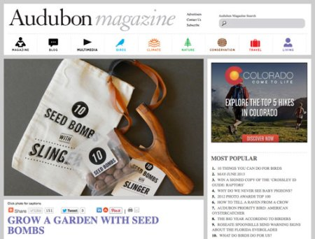 VisuaLingual Seed Bombs in Audubon Magazine