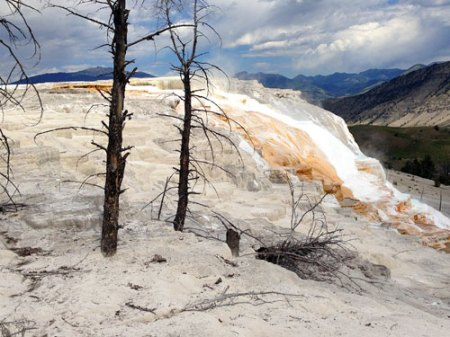 Yellowstone National Park in Wyoming
