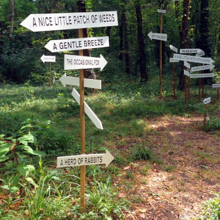 100 Acres: NOTICE: A Flock of Signs by Kim Beck