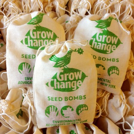 VisuaLingual Promotional Seed Bombs for Environmental Advocates of NY