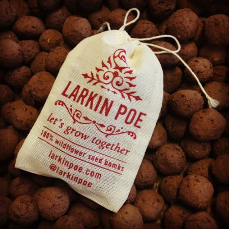 VisuaLingual Promotional Seed Bombs for Larkin Poe