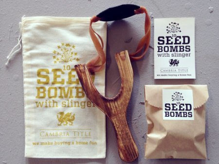 VisuaLingual Slingshot+Seed Bomb Kit for Cambria Title