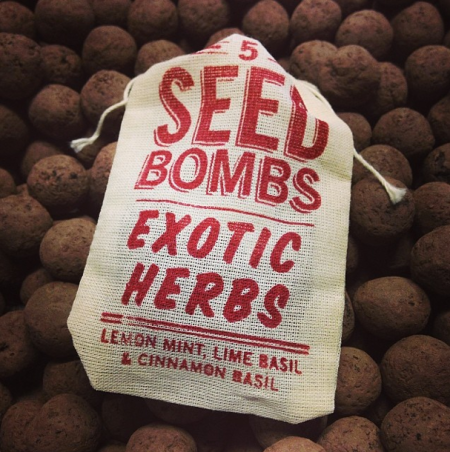 VisuaLingual Seed Bombs at Junk in the Trunk