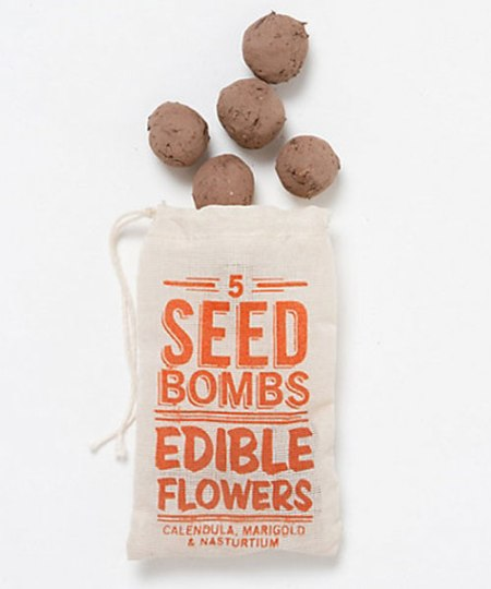 VisuaLingual Edible Flower Seed Bombs at Terrain