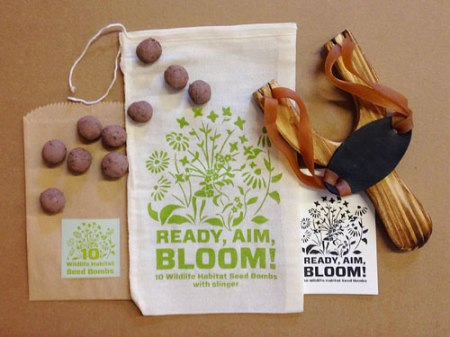 VisuaLingual Earth Day Seed Bomb Promotion