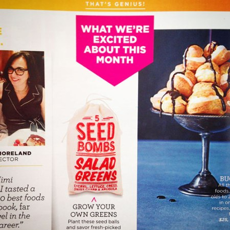 VisuaLingual Seed Bombs in Good Housekeeping Magazine