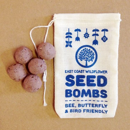VisuaLingual Seed Bombs for the Philadelphia Flower Show